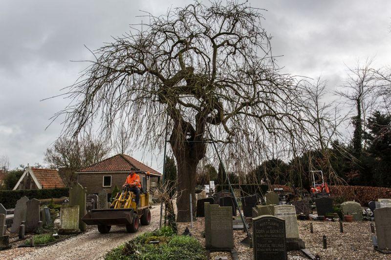 <strong>Begraafplaats Oosthuizen</strong>